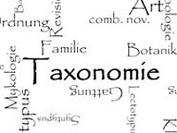 Study on Taxonomy